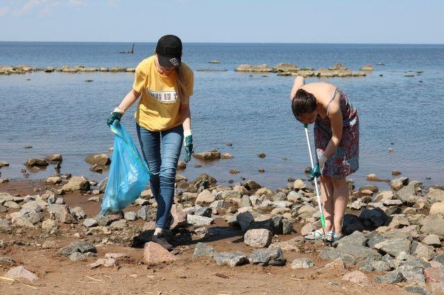 Весь собранный мусор волонтеры классифицируют по категориям – от пластика до стекла.