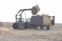 Из-за неблагоприятных погодных условий общий ущерб составил в пределах 240 миллионов рублей.