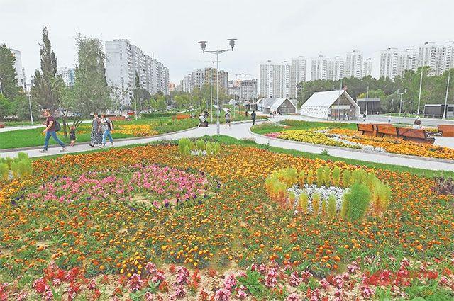 8 сентября в районе высадят тысячи цветов.
