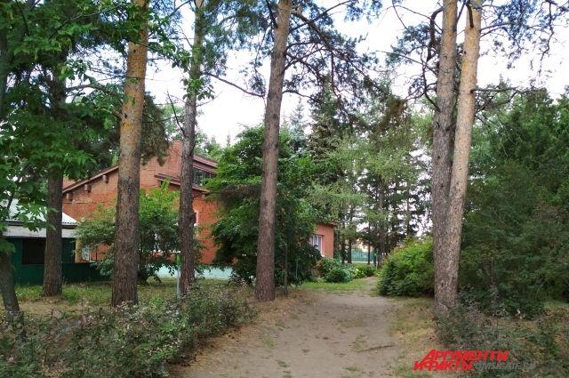 В саду П.С. Комиссарова есть музей, в котором посетителям рассказывают о жизни легендарного сибирского селекционера.