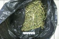 В тюменском селе полиция задержала 53-летнего мужчину с пакетом марихуаны