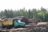 Также обсуждалась проблема утилизации отходов лесопилок.