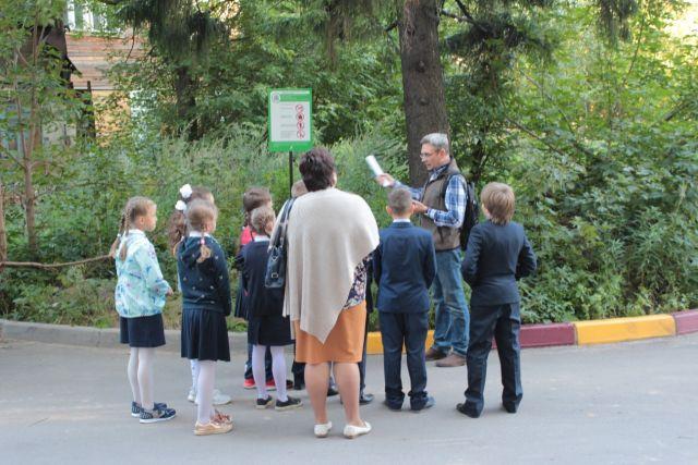 В Нижнем Новгороде прошла экскурсия по деревьям-памятникам