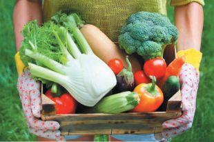 Овощные заготовки не только вкусные, но и полезные.