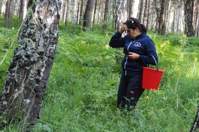 Чаще всего в лесах теряются пенсионеры.