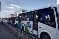 Новые автобусы будут работать на школьных маршрутах.