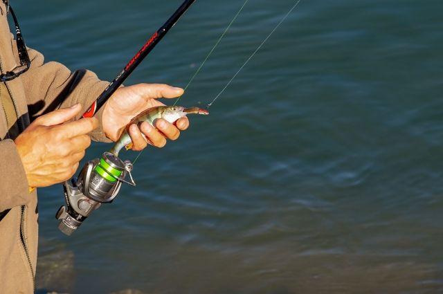 100 кг рыбы изъяли у браконьеров.