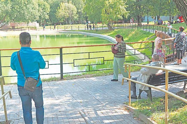 В Новосибирске решили перестроить Заельцовский парк