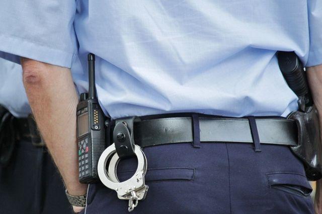 Полицейские задержали злоумышленника по горячим следам.