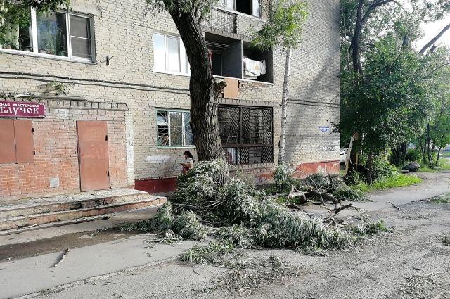 В Тюмени рабочий получил травму во время уборки поваленных деревьев