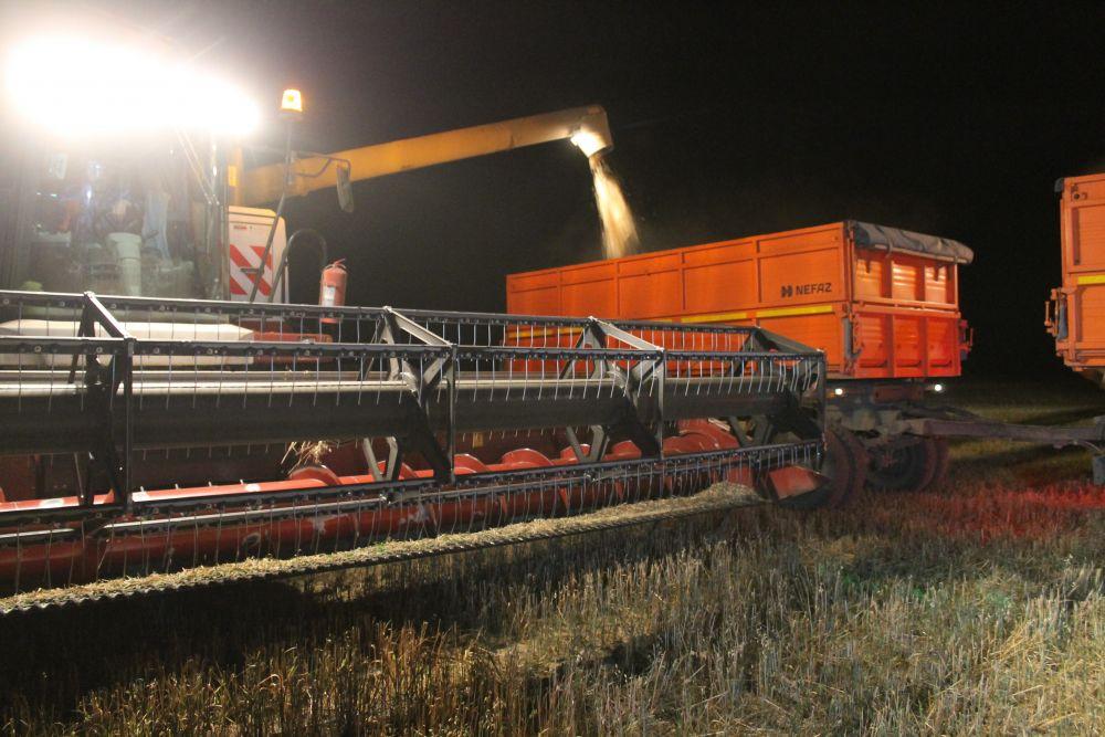 Алтайский губернатор посетил ночную уборку овса