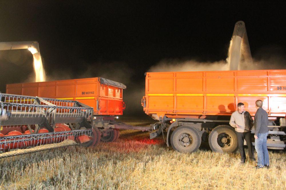 Виктор Петрович наблюдает за погрузкой зерна