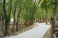 В Тюмени высадят 20 крупноразмерных елей в сквере Якова Неумоева