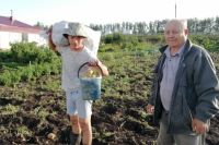 Свой сад - это сразу несколько налогов: на землю, на имущество (дом) и отдельно на хозпостройки.