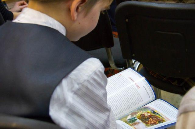 Хорошо, если в доме будет много книг, еще лучше, если эти книги будут с картинками, так как дислексики лучше воспринимают визуальную информацию. Но «давить» на детей, заставляя много читать, ни в коем случае нельзя.