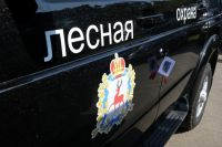 Почти сотня единиц лесопожарной техники пришла в регион по национальному проекту.