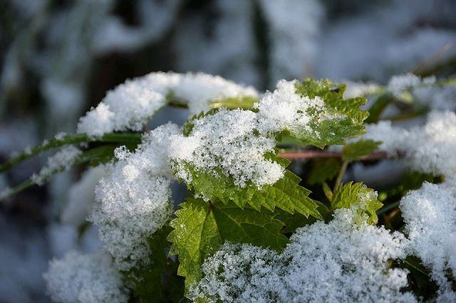 В Норильске минусовые температуры продержатся всю неделю.