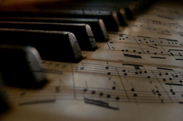 В ноябрьскую детскую музыкальную школу доставили новые инструменты