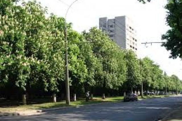 Битва за проспект Жукова: суд в Харькове отменил переименование улицы