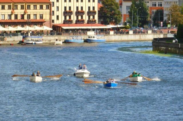 На реке Преголя пройдут соревнования по гребным видам спорта