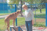 Жительница Татьяна со своим питомцем Нэшвиллом гуляет на новой площадке два раза в день.