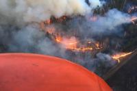 Тайга в крае горела все лето.