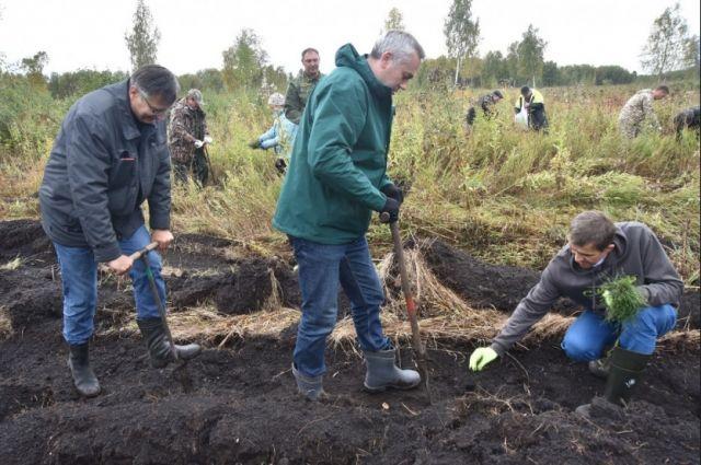 В высадке саженцев сосны приняли участие губернатор Новосибирской области Андрей Травников и председатель совета директоров группы компаний S7 Group Владислав Филёв.
