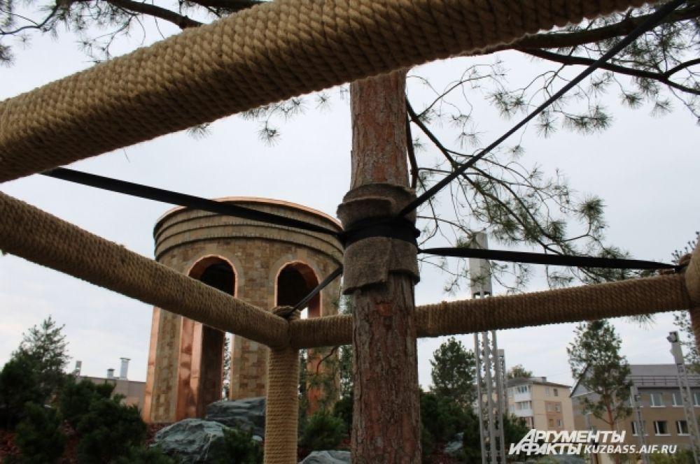 Соснам понадобится около 2 лет, чтобы прижиться. Поэтому их укрепили специальными конструкциями.