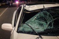 Водитель был трезв, а девушка пересекала дорогу в неположенном месте.