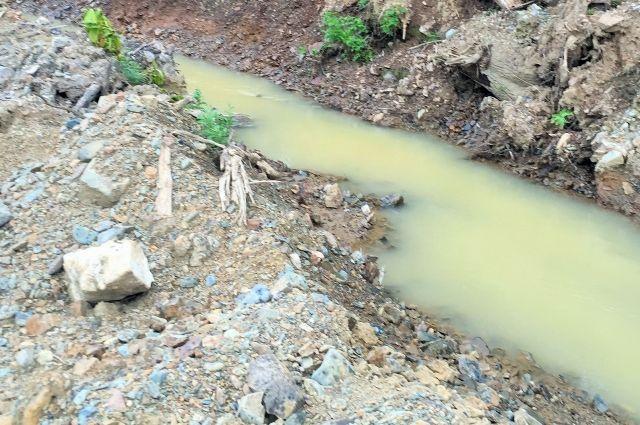 На загрязнение реки Кия пожаловались местные жители.