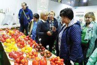 Жюри проекта выявило лучшие сорта помидоров из народа.
