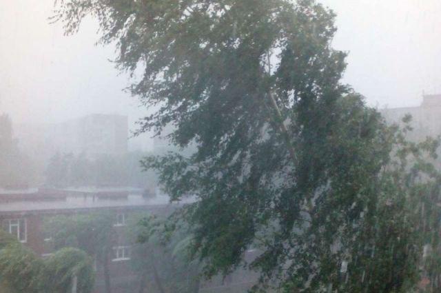 В некоторых районах пройдут сильные дожди.