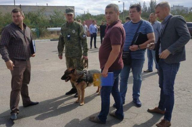 Тройное убийство: в Николаеве на заправке обнаружены трупы мужчин