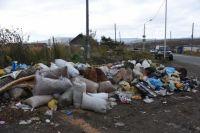 Отходы в районе улицы Первомайской оставляют, судя по всему, дачники, возвращающиеся в город.