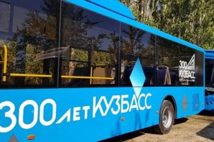 Новые автобусы заменят вышедшие из строя на маршрутах муниципального транспорта.