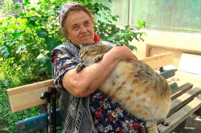 Кот Степан и его хозяйка.