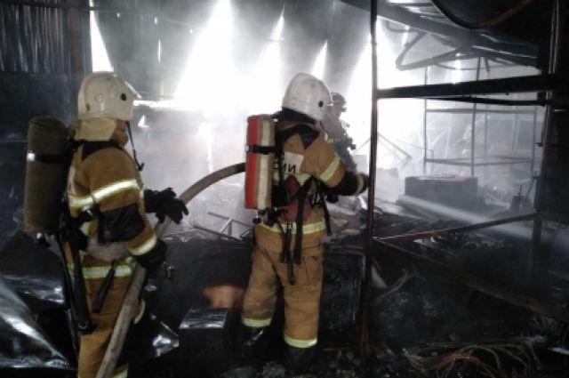 В горевшем ТРЦ в Грозном были выявлены семь нарушений норм безопасности photo