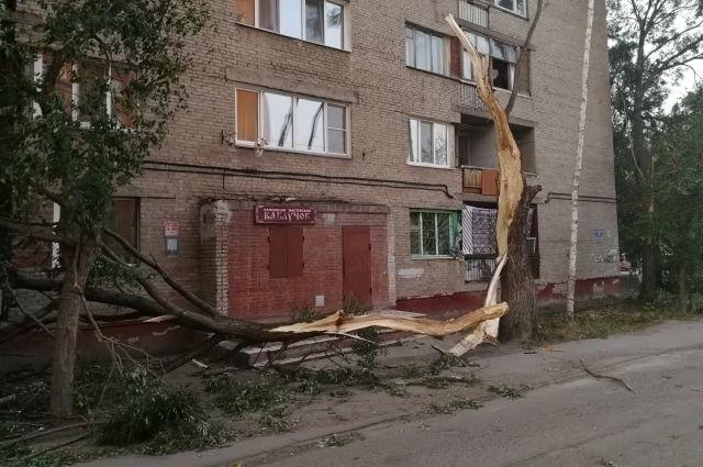 В Омске устраняют последствия штормового ветра