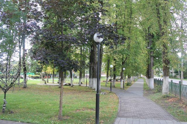 Природа Западнодвинского района располагает к отдыху, а городской парк с фонтаном, ажурными скамейками и оригинальными шахматами радует глаз.