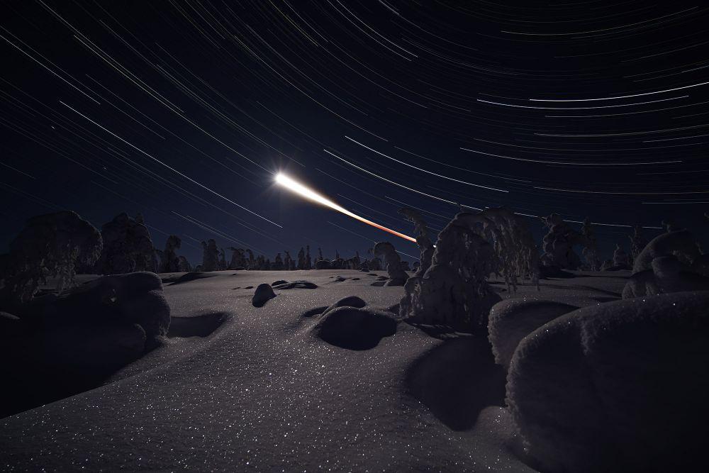 «Путь лунного затмения и деревья в снегу» — номинант в категории новичков.