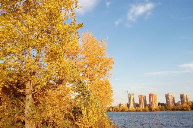 В городе - золотая осень.