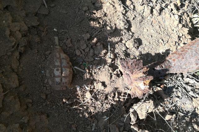 Во время уборки нашли ржавую гранату.