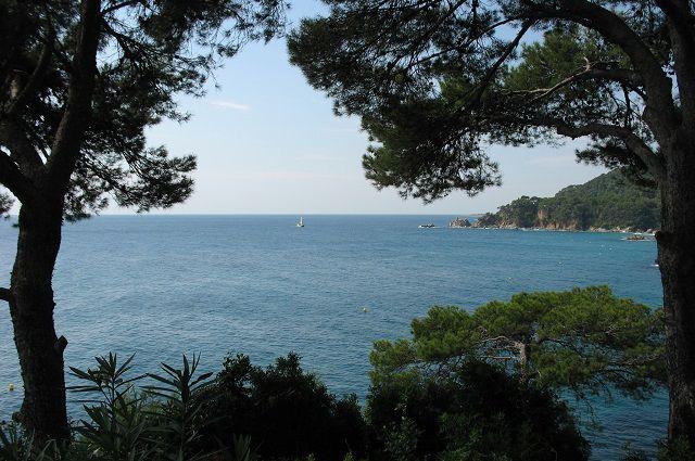 23:05 22/09/2019 262СМИ на Кипре утонул пожилой турист из России  Инцидент произошел в ПротарасеЕлена