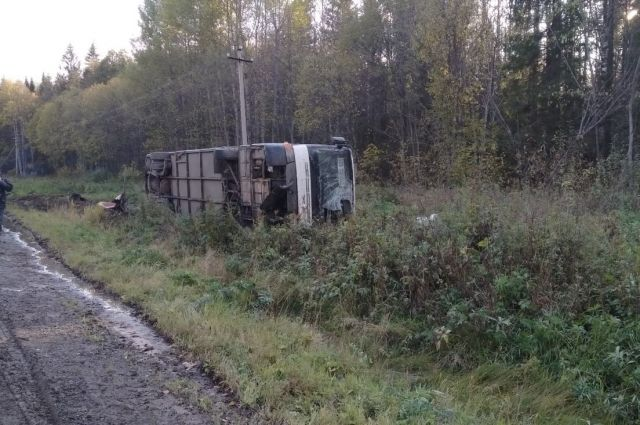 Инцидент случился 25 сентября около 13 часов.