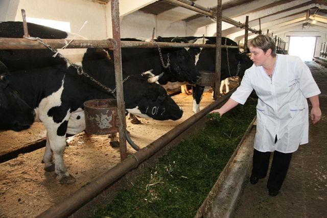 В прирост экспорта сельскохозяйственной продукции свою долю могут внести не только крупные компании, но и фермеры.