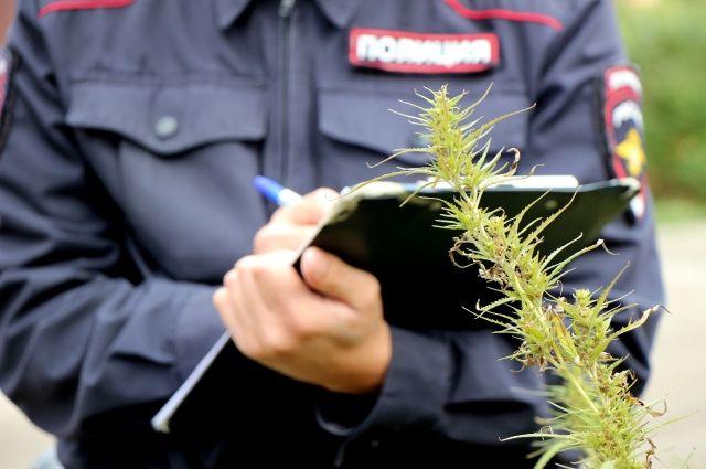 В Оренбуржье проводится профилактическое мероприятие