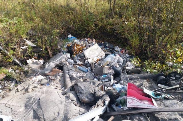В Орджоникидзевском районе была обнаружена куча отходов из документов предприятия.
