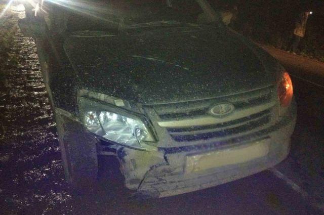 Животное же удалом откинуло на движущийся автомобиль «Лада Гранта» под управлением 31-летнего мужчины.