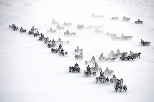 Ямальцев приглашают принять участие в фотоконкурсе «Живем на Севере»