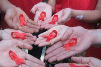Во время автопробега в Тюменской области выявили 29 ВИЧ-инфицированных
